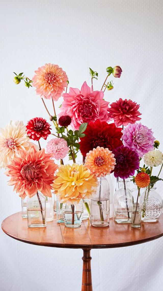 vis-fleurs